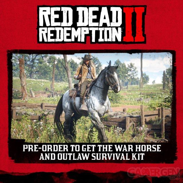 Red Dead Redemption 2 éditions Collector Ultime Spéciale bonus de précommande (1)