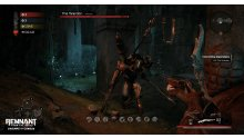 Remnant From the Ashes DLC Swamps of Corsus (2)