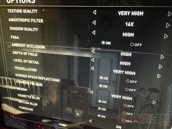 rise tomb raider options graphiques