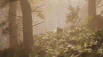 SCUM Hazy Forest
