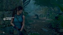 Shadow of the Tomb Raider ?2018-?07-?24 01-31-30.00_19_45_19.Image fixe012