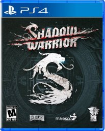 shadow warrior cover jaquette boxart ps4