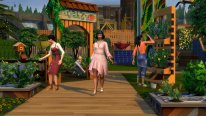 sims 4 ecologie 001