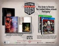 Sleeping Dogs Definitive Edition bonus 1