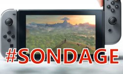 Sondage Nintendo Switch images (2)