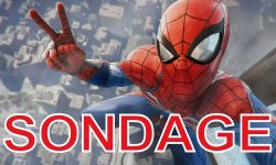 Spider Man sondage communaute images (2)