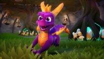 Spyro Reignited Trilogy 03 20 07 2018