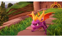 Spyro Reignited Trilogy head