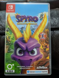 Spyro Reignited Trilogy images switch edition (2)