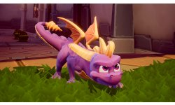 Spyro Reignited Trilogy Officiel Presse (1)