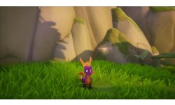 Spyro Reignited Trilogy   PS4 Gameplay