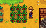 Stardew Valley : 10 millions de copies vendues