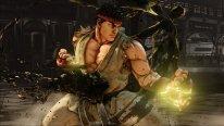 Street Fighter V  (21)