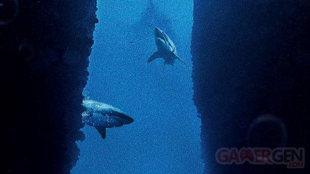 Submersed image