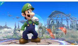 Super Smash Bros 07 08 2013 screenshot 5