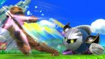Super Smash Bros 13.08.2014  (6)