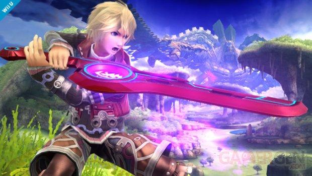 Super Smash Bros 29 08 2014 screenshot 1