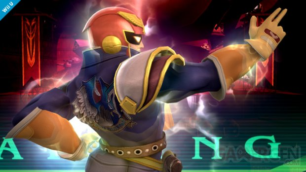 Super Smash Bros Falcon (16)