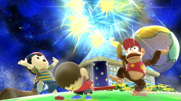 Super Smash Bros. for Wii U 21.10.2014  (135)