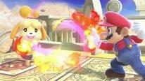 Super Smash Bros Ultimate 07 14 09 2018