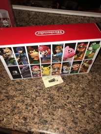Super Smash Bros. Ultimate Switch Collector image (6)
