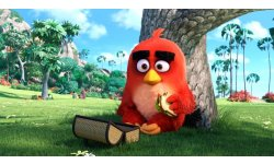 The Angry Birds Movie pic