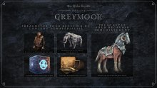 The-Elder-Scrolls-Online-Greymoor-03-16-01-2020