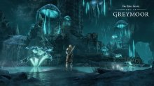 The-Elder-Scrolls-Online-Greymoor-10-16-01-2020
