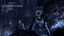 The-Elder-Scrolls-Online-Harrowstorm-02-16-01-2020