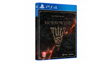 the elder scrolls online morrowind 01