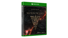 the elder scrolls online morrowind 02