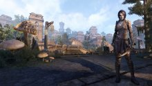 the elder scrolls online morrowind 22