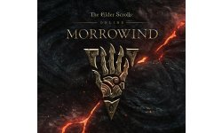 the elder scrolls online morrowind 28