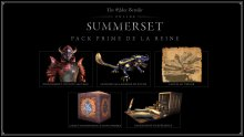 The-Elder-Scrolls-Online-Summerset-Pack-Prime-de-la-Reine-21-03-2018