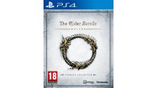 The Elder Scrolls Online Tamriel Edition jaquette PS4