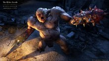 The Elder Scrolls Online The Wrath of Volghass