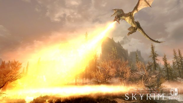 The Elder Scrolls Skyrim Switch 2017 06 12 17 003