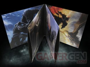 The Elder Scrolls V Skyrim Edition Ultime Exclusivité Fnac Vinyle Transparent Coffret2