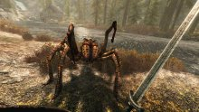 The Elder Scrolls V Skyrim VR image (3)