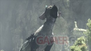 The Last Guardian 27 05 2016 screenshot 9
