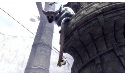 The Last Guardian images (1)