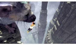 The Last Guardian images (2)