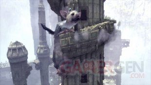 The Last Guardian images (5)