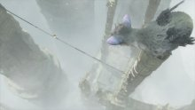 The Last Guardian images captures (4)