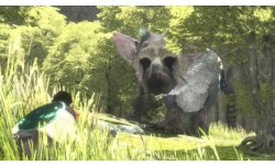 The Last Guardian images captures (5)