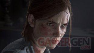 The Last of Us Part II vignette 13 05 2020