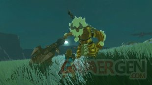 The Legend of Zelda Breath of The Wild 13 06 2017 Les Épreuves Légendaires screenshot (4)