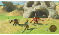 The Legend of Zelda Breath of the Wild images (29)