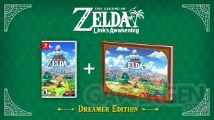 The Legend of Zelda Link's Awakening Dreamer Edition