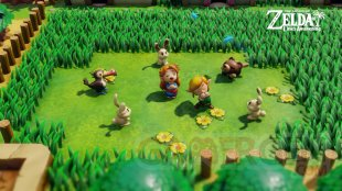 The Legend of Zelda Link's Awakening vignette 06 09 2019